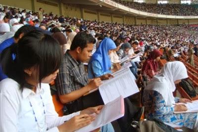 Info Pengumuman Hasil Tes CPNS 2013