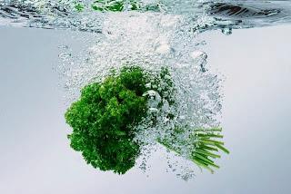 فوائد البقدونس المتنوعة  البقدونس تلك النبتة الخضراء بلونها الغامق الخضار ذات الاوراق لها الكثير من الفوائد الغذائية و العلاجية لجسم الانسان . ويسمى ملك الخضروات فوائد البقدونس هي : - مقوي للعظام و الاسنان , لانه يحتوي على كميات كبيرة من البوتاسيوم . - ملطف لتقلصات الرحم فهو يفيد في حالات الطمث و التهاب المثانة . - يحتوي على بعض الزيوت و العصارات يجدي في الخصوبة عند المرأة اذا داومت على تناوله مأكولا أو مشروبا بعد اغلائه. - مدر للبول . - مدرالعصارات المعدية . - يفيد في افراز الصفراء من الكبد - ملين للأمعاء . - يزيد من حيوية ونشاط الجسم بشكل عام . - يساعد في إنقاص الوزن، لأنه فعال في إذابة الدهون المتراكمة. - اكساب البشرة الملمس الناعم . يفيد في ازالة التجاعيد من الوجه و غيره. - يعمل على ازالة التنميل في الجسم . - يحول دون حدوث عسر هضم .بالذات عند اكل الوجبات الدسمة كاللحوم . - يعتبر مخدر موضعي عظيم لالام الاسنان عند المضمضة بعصيره لاحتوائه على ملح البوتاسيوم . - لعصيره مفعول السحر لتخفيف الآم الكليتين و المغص المراري و امغاص القولون و المعدة . - لبخات او كمادات البقدونس تزيل تماما الام العضلات عندما تطبق على موضع الالم .  ماذا يعالج البقدونس ؟  - يفيد البقدونس في علاج حالات فقر الدم ، وبذلك فهو علاج للأنيميا ، كما يساعد على توسيع الأوعية الدموية ، ويعمل على تجديد الشعيرات الدموية الدقيقة ، وينظم الدورة الدموية في الجسم ، إلى جانب أنه نافع للقلب . - البقدونس يخفف آلام الكليتين والمثانة ومجرى البول ، كما أنه يعالج حصوات المسالك البولية بإذابتها ، - علاج فعال للإمساك والغازات ، فهو ملين ، وملطف ، ومهدىء للمعدة . - البقدونس نافع في أزمات الربو ، واضطرابات الجهاز التنفسى ،،وعصير البقدونس يعالج التهابات الشعب الهوائية . - البقدونس علاج فعال كغسول مهبلى للنساء ، لعلاج السيلان الأبيض واضطرابات الحيض ، كما أنه منظم للطمث . - البقدونس يفيد في علاج الروماتيزم .  دراسات وابحاث عن البقدونس :  البقدونس يتفوق على البرتقال واللبن  أكدت الدراسات الحديثة أن البقدونس له قيمة غذائية عالية لأنه يحتوي على كميات وفيرة من الكالسيوم، بمقدار يفوق ما يحتويه اللبن. وأكد الدكتور طاهر حسين أخصائي التغذية، أن فوائد البقدونس تكمن في أوراقه، ويفضل أن يكون طازجاً، وألا ينقع في الماء وقتاً طويلاً، بل