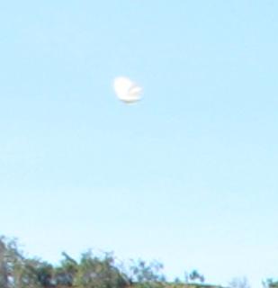 UFO in Costa Rica