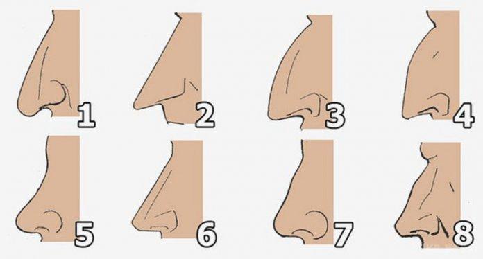 O que o formato do seu nariz diz sobre a sua personalidade?