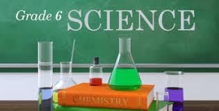 Grade 6 - Science Worksheet 2020 - M.S. Sahuthul Ameen ISA - Science