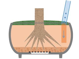 鉢に浸透桝を設置 浸透桝を入れる