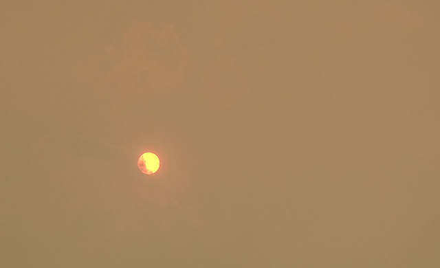 Photo of the orange/red sun at around 12.40pm on Monday