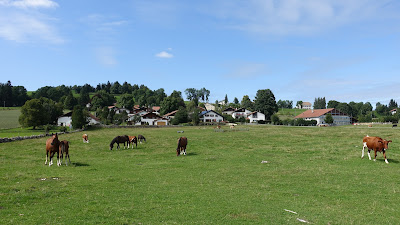 Typische Freiberge-Szenerie bei Le Bémont