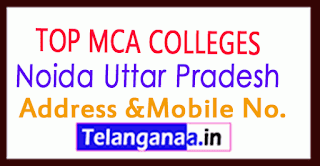 Top MCA Colleges in Noida Uttar Pradesh