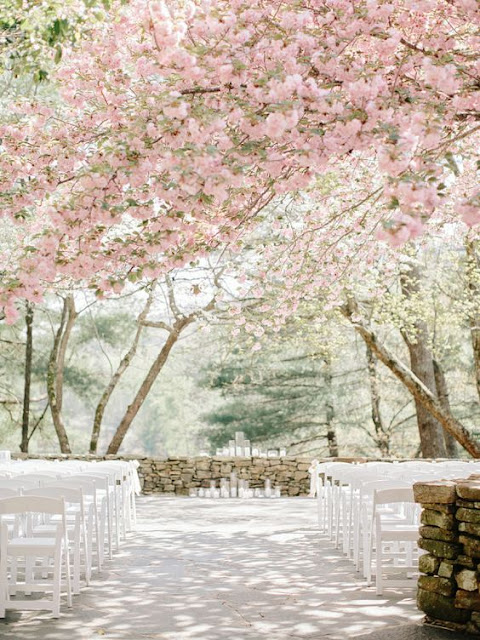 Oriental Themed Weddings With Cherry Blossom Wedding Decorations