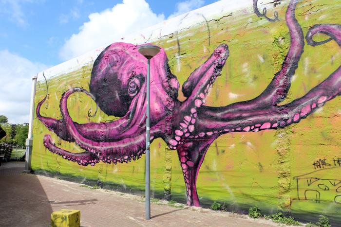 Street Art Hofplein