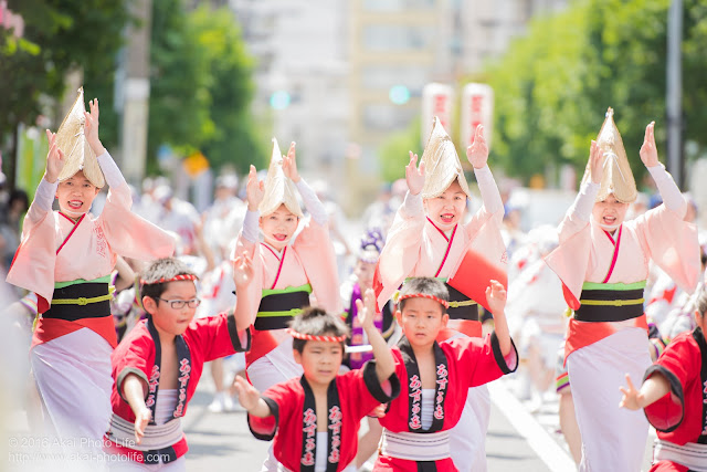 飛鳥連、女踊り、マロニエ祭り福井通り流し踊り