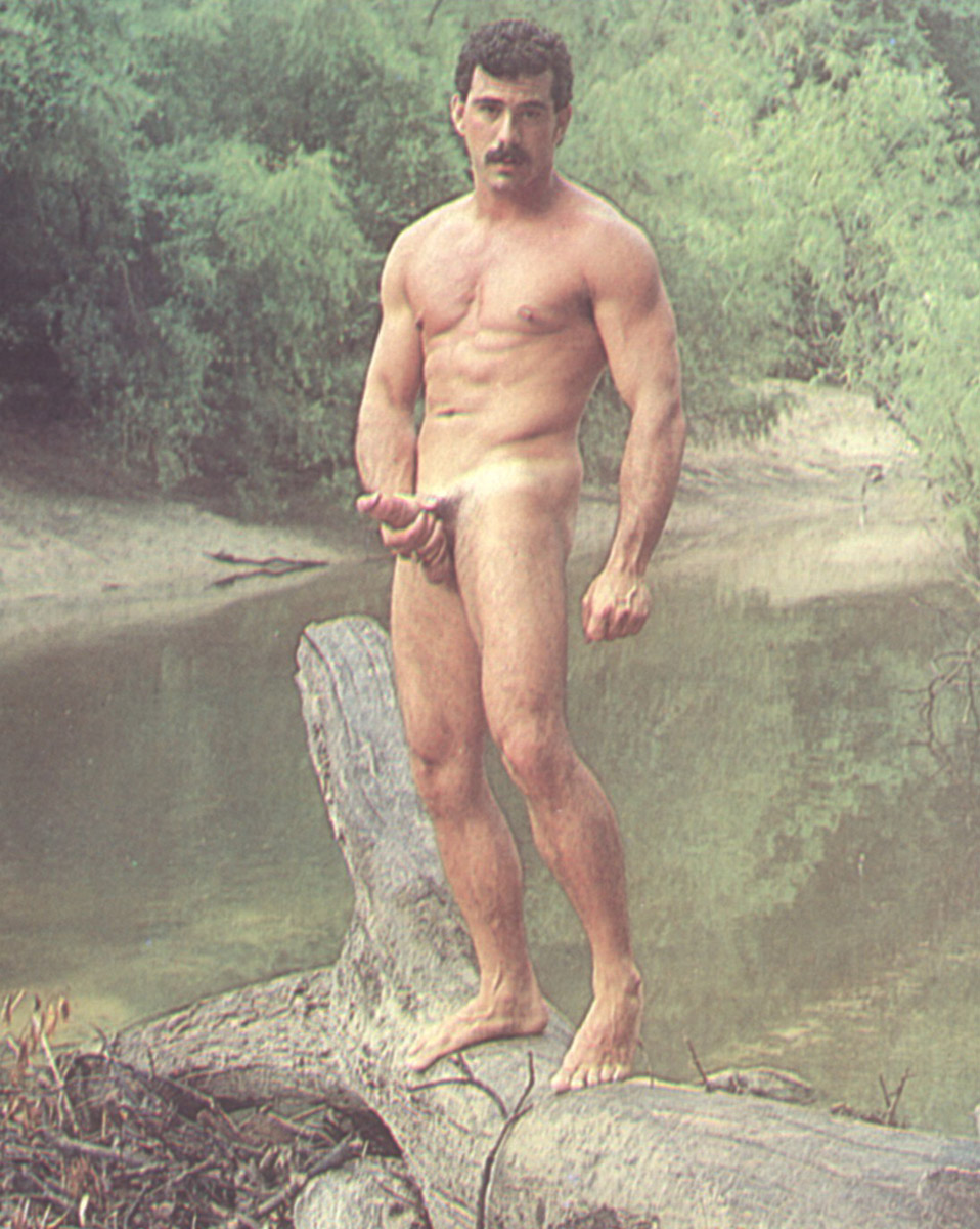 is actor gary sinese gay