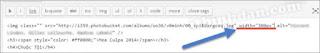 phần mềm quản lý phim - images code cho wordpress