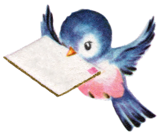 bird pássaro
