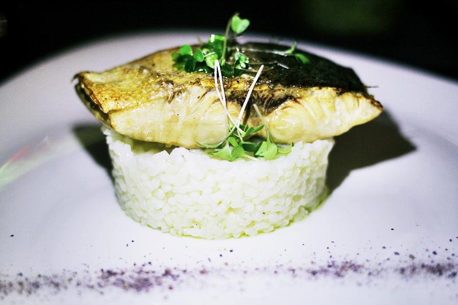 rice fish dish melia sarria