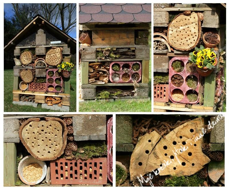 domki dla owadów, pszczoły murarki, domki dla owadów, pszczoły murarki, dzikie pszczoły, skorki, jak zbudować domek dla owadów, jaszczurka zwinka, wild bees, houses for insects, bees masonry, how to build a house for insects, lizard