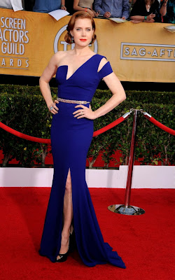 Amy Adams Screen Actors Guild Awards 2014