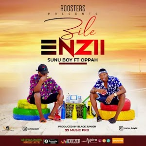 Download Audio | Sunu Boy ft Oppah - Zile Enzi