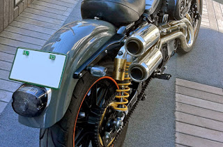 xl1200s sportster sport back right side angle