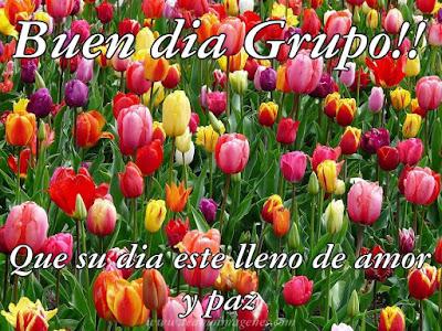 imágenes con frases de Buen Dia GRUPO