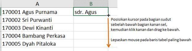 Cara Drag Fill Flash Excel