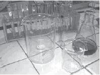 Tabung reaksi di rak tabung reaksi, gelas beaker, gelas/labu erlenmeyer.