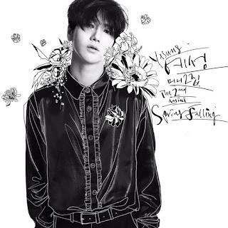 Super Junior: YESUNG - Spring Falling Albümü