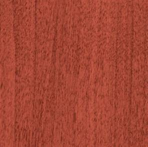 Sierra Cherry Swatch