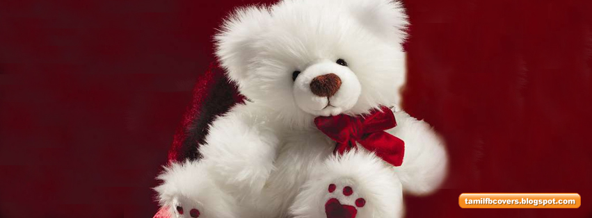 My India Fb Covers White Teddy Bear Cute Fb Cover