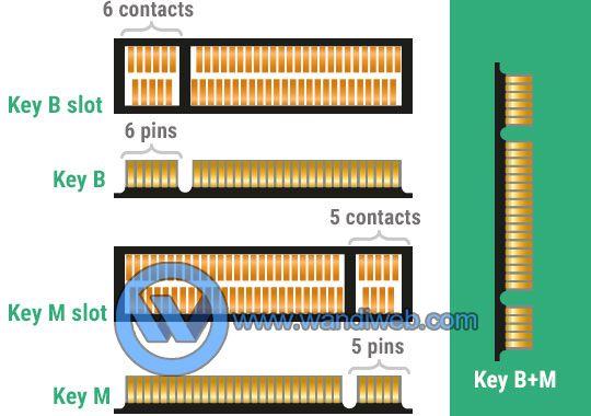 M.2 SSD, Apa Perbedaannya dengan SSD Biasa pada Umumnya? - WandiWeb
