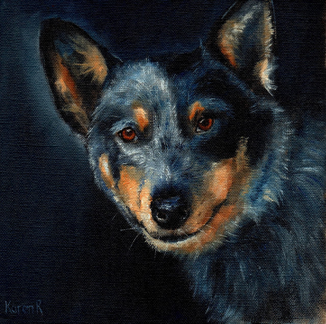 oil painting of a blue heeler, pet portrait