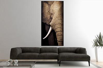 www.reaction.sk, dizajnový nábytok, maľované obrazy