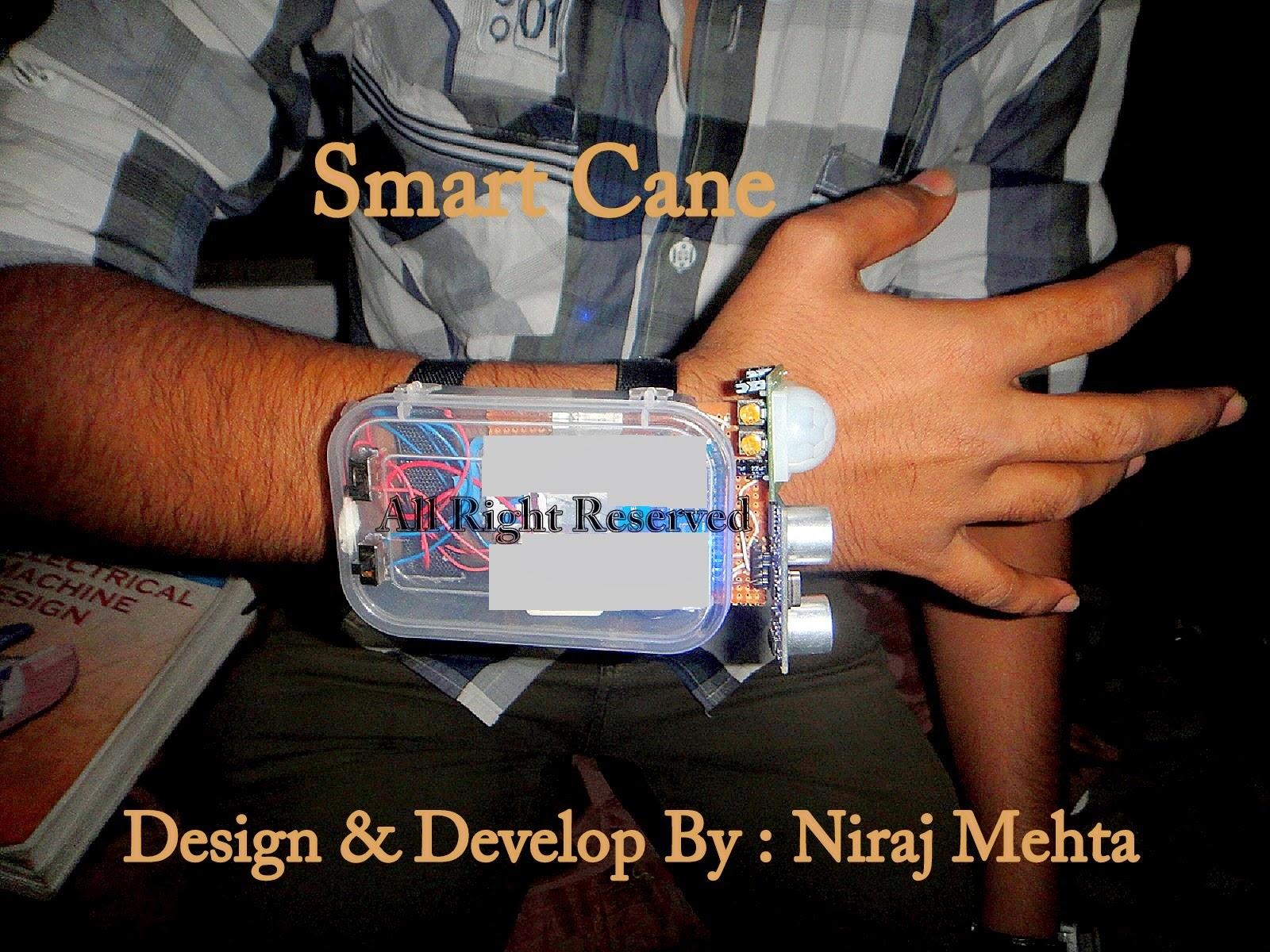 Smart Cane Project Smart Cane