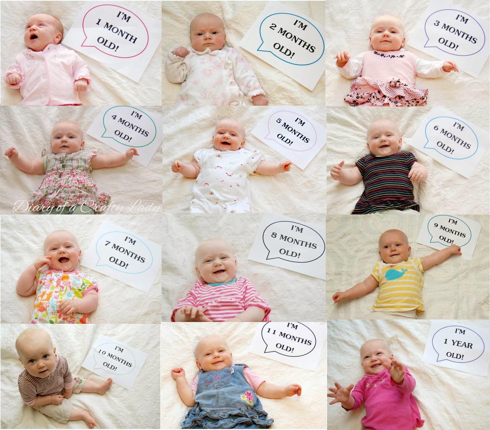 Time Lapse Month By Baby Pictures