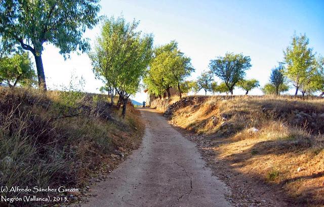 negron-vallanca-valencia-camino-cementerio