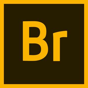 Adobe Bridge CC 2019 v9.0.2 Full Free Download