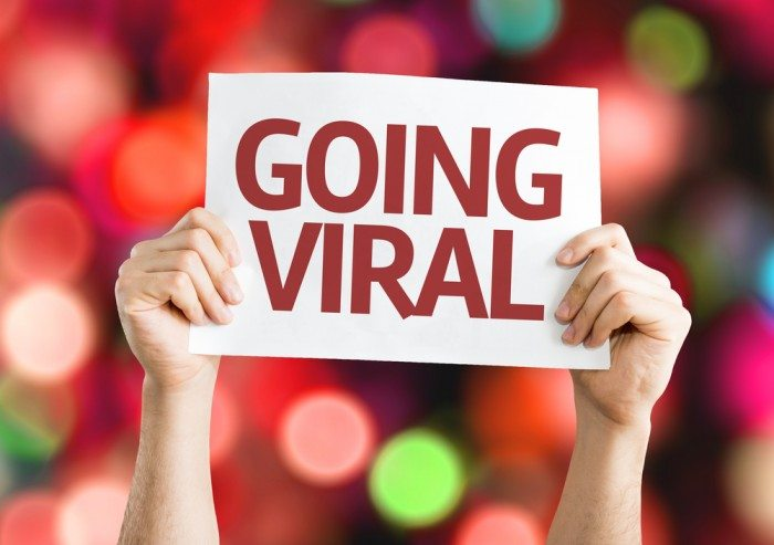 video marketing, content marketing, email marketing
