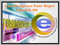 Cara Pengisian Emis Rapor Sekolah MI/MTs/MA Dengan Format Word
