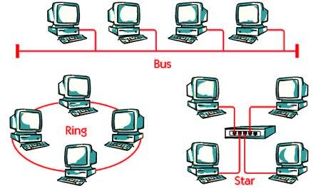 types of Topologies bus topology star topologies ring topologies