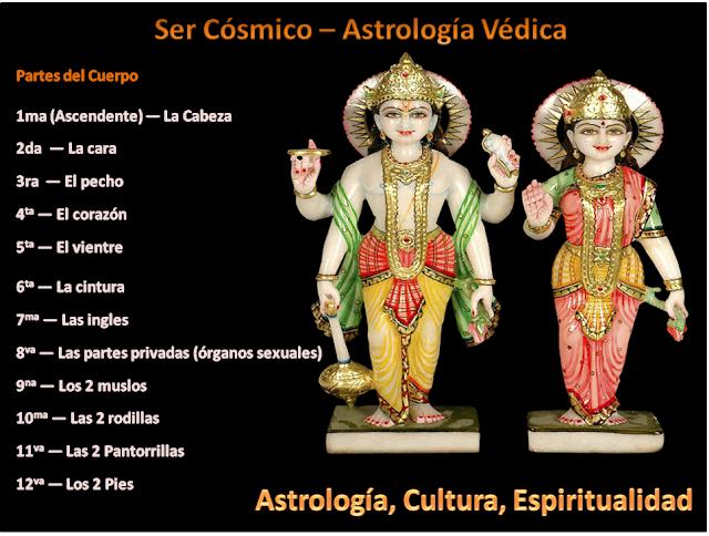kalapurusha el ser cósmico, los signos las casas y las partes del cuerpo, astrología védica, los signos del zodiaco y las partes del cuerpo, astrología védica, vedic astrology zodiac body