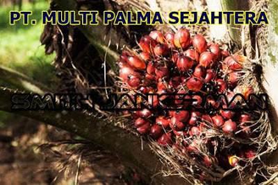 Lowongan PT. Multi Palma Sejahtera Pekanbaru Juli 2018
