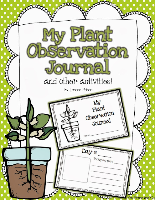 http://www.teacherspayteachers.com/Product/My-Plant-Observation-Journal-and-other-plant-activities-689866