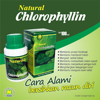 Natural Clorppylin Anti Racun Alami
