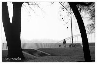Kutyasétáltató ember a szegedi stefánián a Tisza mellett