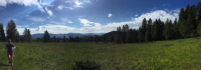 Sun Mountain 50K