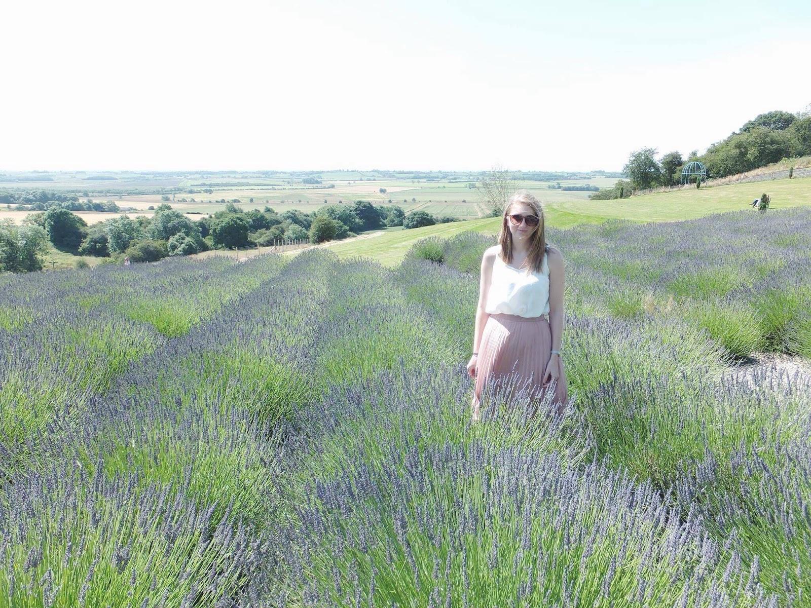Beth-In-Lavender