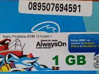 Jual Paket Data Injek 3 (Tri) AON KPK Harga Murah