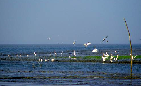 Nijhum Dwip (Nijhum Island), Hatia, Bangladesh, tourist places