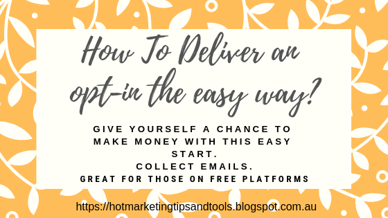 How to deliver an optin offer the easy way?
