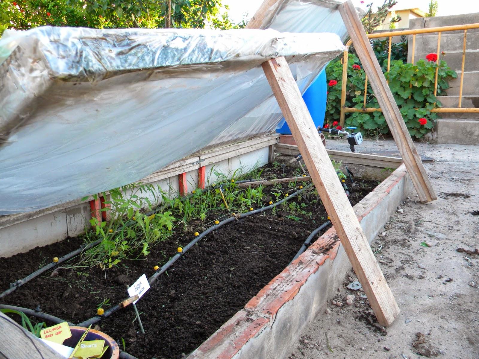 El huerto de tatay semillero controlar el riego - Tierra para semilleros ...