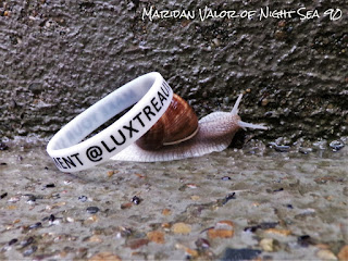 A Slow Thief; A snail tried to steal my bracelet. Video of it on blog.