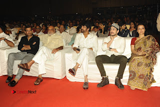 Om Namo Venkatesaya Telugu Movie Audio Launch Event Stills  0318.JPG