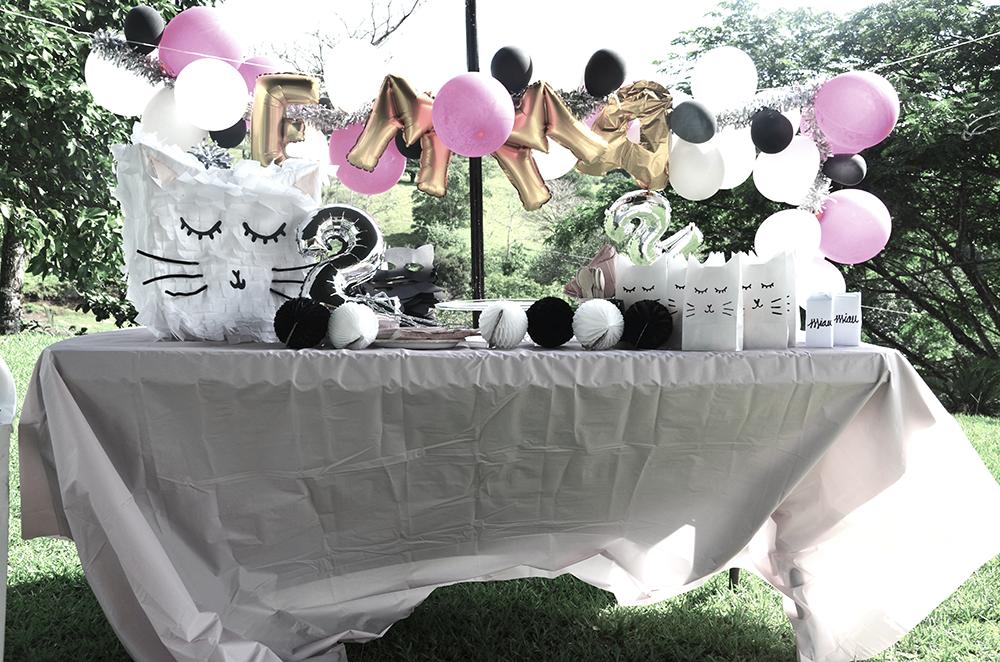 minimal-cat-party